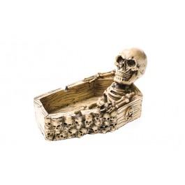 Asbak skelet