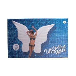 Opblaasbare vleugels 250x180 cm