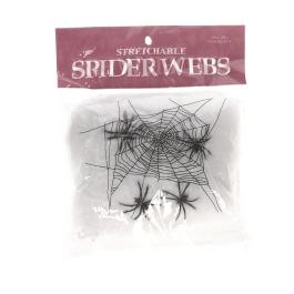 Halloween Spinnenweb