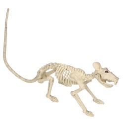 Skelet rat