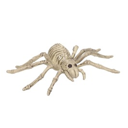 Skelet spin