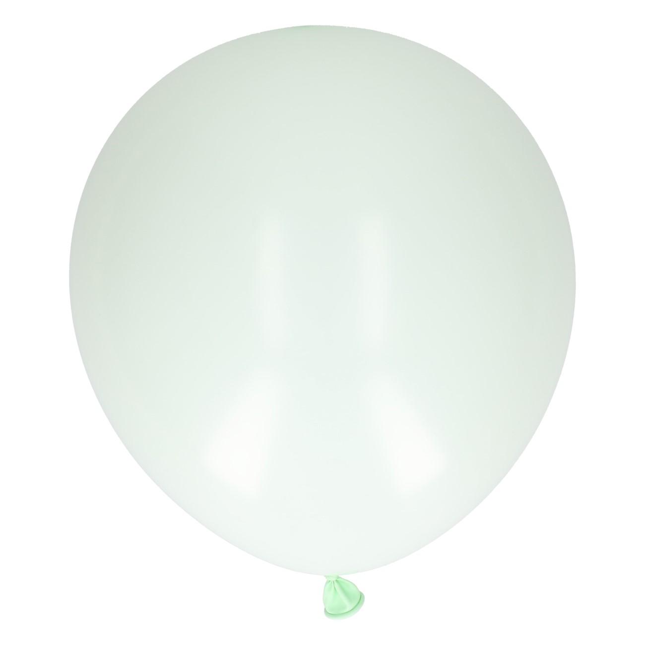 Ballonnen mint 24 stuks