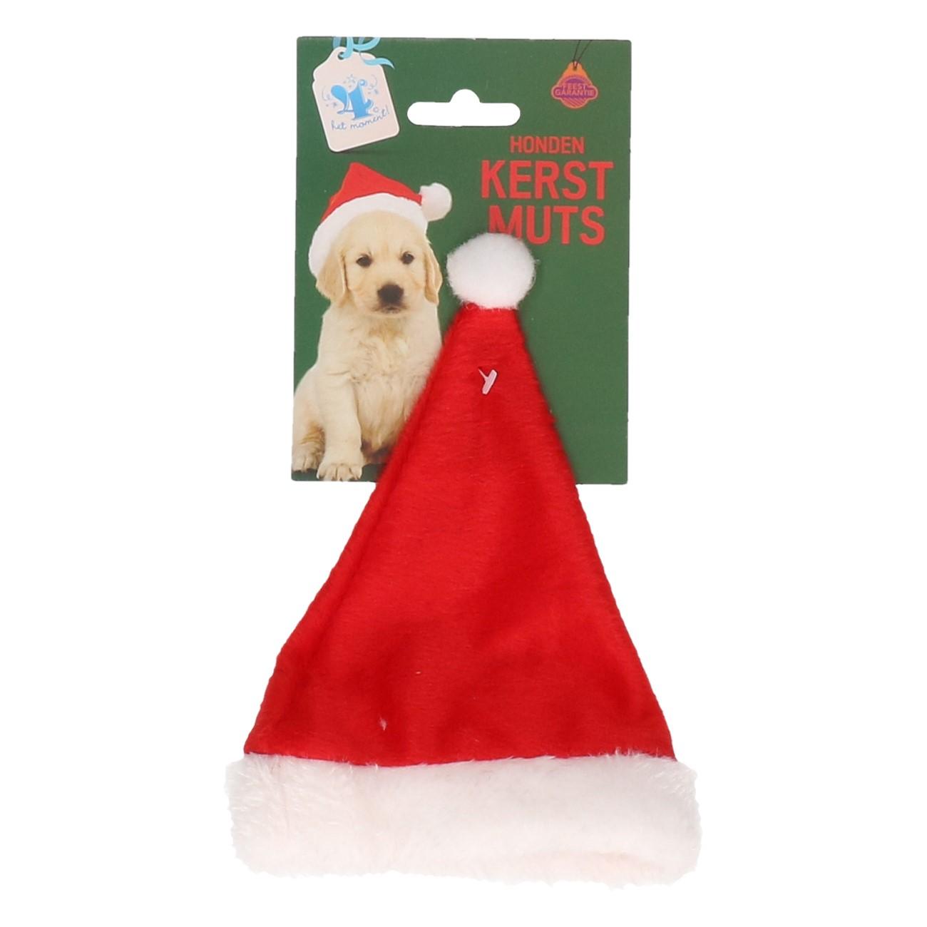 Honden kerstmuts